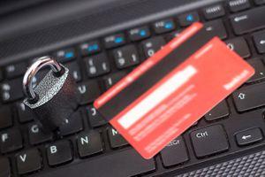 Trang thanh toán của chính phủ Mỹ rò rỉ 14 triệu hồ sơ khách hàng