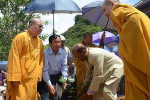 Ðến chùa Tam Chúc kể về cây bồ đề thiêng từ đất Phật