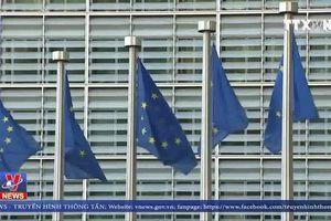 EU điều tra các tập đoàn ôtô Đức cấu kết gian lận khí thải