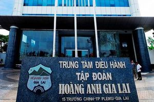 Đại gia nào đứng sau thương vụ chuyển 24 triệu cổ phiếu HNG cho Hoàng Anh Gia Lai?