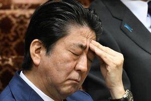 Liệu ông Abe có trở thành Thủ tướng Nhật Bản nhiệm kỳ 3?