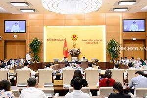 Thực hiện sát sao các nội dung Nghị quyết của Quốc hội