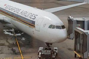 Máy bay Singapore đi TP.HCM tông ống lồng