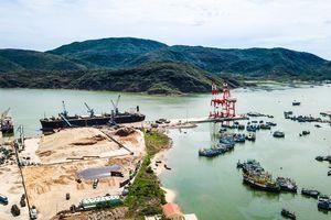 Toàn cảnh cảng Quy Nhơn, nơi sai phạm hàng loạt khi cổ phần hóa