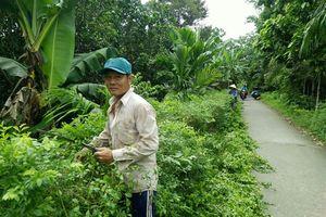 Đại Thành tiên phong trong xây dựng nông thôn mới