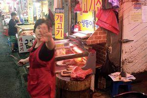 'Giải cứu' 2 chú cún ở chợ chó khét tiếng Hàn Quốc