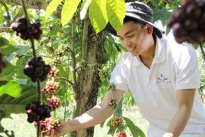 42 dự án khởi nghiệp nông nghiệp tranh tài tại Tp.HCM