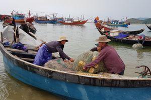 TÁC PHẨM THAM DỰ GIẢI BÚA LIỀM VÀNG NĂM 2018: - Hồi sinh biển miền Trung (Kỳ 1: Yên tâm bám biển)