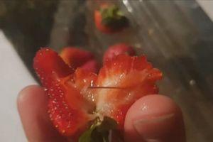 Bắt giữ nghi phạm đầu tiên trong vụ kim khâu bị gài vào hoa quả tươi tại Úc
