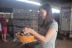 Bí quyết làm giàu: Từ bán rau củ thành nữ triệu phú nấm