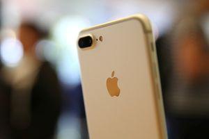 Khám phá những thay đổi thú vị từ camera iPhone sau khi lên iOS 12