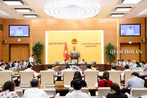 Thẩm tra việc triển khai các Nghị quyết giám sát chuyên đề