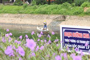 Hà Nội: Sắc tím hoa dạ yến thảo phủ khắp bờ sông Tô Lịch