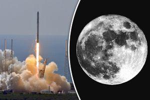 SpaceX công bố danh tính hành khách đầu tiên sẽ bay lên Mặt Trăng