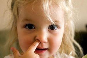 Khuyến khích trẻ ngoáy và ăn gỉ mũi vì nó chứa chất có lợi sức khỏe