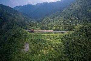Alishan Railway - chốn bồng lai tiên cảnh cho kẻ lữ hành mộng mơ