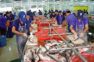 Kinh tế Việt Nam dự báo tăng trưởng tốt trong bối cảnh căng thẳng thương mại Mỹ - Trung gia tăng