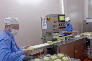 Áp dụng công nghệ vào sản xuất bánh Trung thu