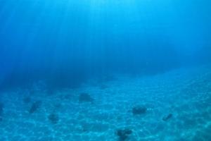 Sử dụng robot tìm hiểu nguồn khoáng sản dưới đáy đại dương