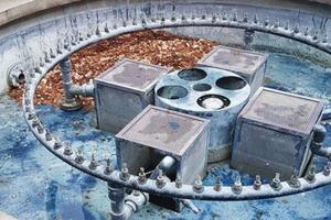 Anh: Thả 100.000 đồng tiền xuống đài phun nước để thử lòng người