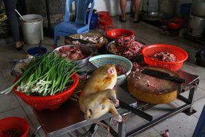 Quận 1 kiểm tra phố thịt cầy nổi tiếng trên đường Cống Quỳnh