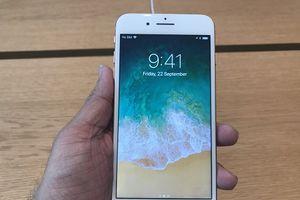 'Lên đời' với iPhone XS Max hay mua iPhone 8 Plus?