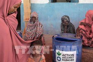 Tham nhũng đe dọa 'giấc mơ' xóa đói, giảm nghèo của châu Phi