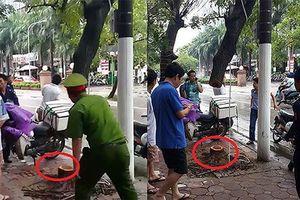 Hà Nội: `Treo cổ` cây sưa ăn trộm gốc, 6 đối tượng bị bắt?