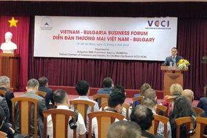 Doanh nghiệp Bulgaria và TP. Hồ Chí Minh tăng cường hợp tác trên nhiều lĩnh vực