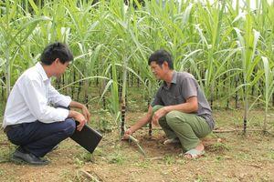 Những chuyển biến trong công tác đào tạo cán bộ ở huyện Quan Hóa
