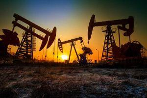 Giá dầu thô giảm khi Hoa Kỳ chỉ trích OPEC