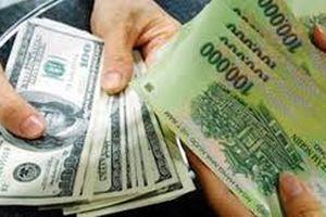 Sau tỷ giá, đến lượt lãi suất vay mượn giữa các ngân hàng rớt nhanh