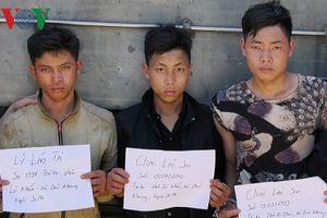 Thiếu tiền chơi điện tử, 3 thanh niên Lào Cai rủ nhau đi trộm trâu