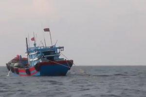 Sử dụng xung điện đánh bắt hải sản