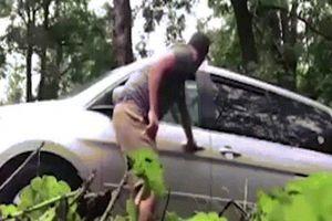 Mỹ: Mở cửa xe, kinh hãi thấy con vật khổng lồ chui ra từ ghế lái