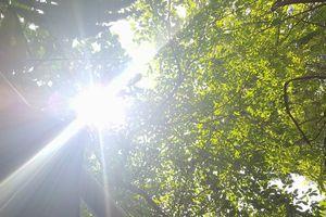 Thời tiết ngày 22/9: Hà Nội tiếp tục có nắng