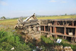 Chạy trên Ql 1A, xe container lao xuống ruộng trong đêm, hai người thoát chết
