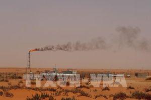 Giá dầu thế giới tuần qua đi lên trước thông tin mới về cung-cầu