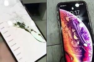 Mới mua chưa cầm nóng tay, anh chàng đã phải khóc thét vì làm rơi nát bét iPhone Xs Max