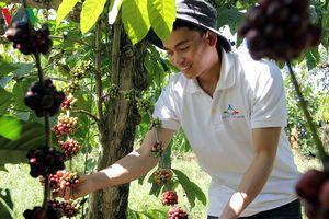 42 dự án tranh tài tại bán kết cuộc thi khởi nghiệp nông nghiệp