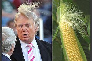 Ông Trump tự hào về mái tóc 'kỳ quặc' của mình