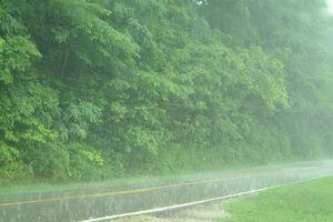Mưa to gây ngập úng, sạt lở đất cho các tỉnh Nam Trung Bộ và Tây Nguyên