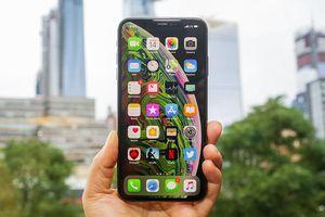 Lý do thực sự khiến giá những chiếc iPhone xách tay về nước sớm luôn cao khó tin