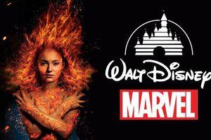 Giám đốc điều hành Disney xác nhận: 'Marvel Studios đang tiến hành thực hiện các dự án về 'X-Men'!