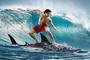 Big_Trends: Con sóng Uptrend đã bắt đầu