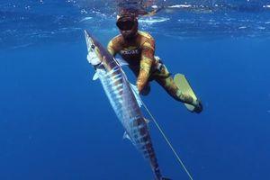 5 loại hải sản đắt nhất hành tinh