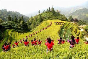 Chùm ảnh cuốn hút lễ hội mùa màng ở Trung Quốc