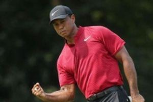Tiger Woods có danh hiệu PGA Tour thứ 80