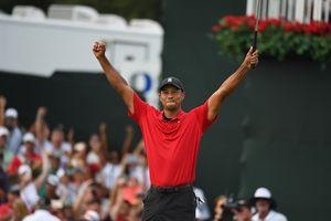 Tiger Woods trở lại sau 5 năm ở 'địa ngục'