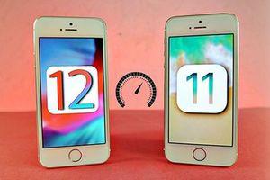 Có nên nâng cấp phần mềm iPhone lên iOS 12?